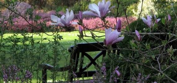 Arboretum des Grandes Bruyères © J. F. Grossin