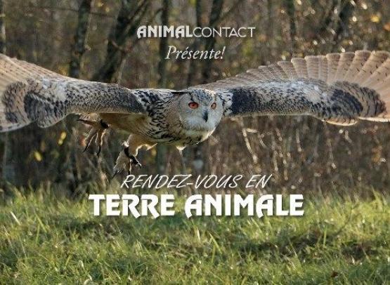 RENDEZ-VOUS EN TERRE ANIMALE