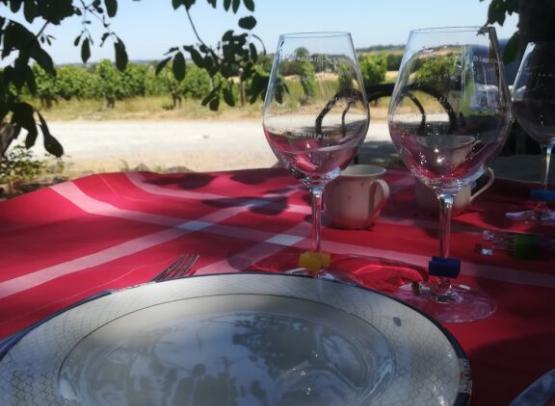 pique-nique-vigneron-degustation-musset-roullier-pommeraye-msl-osezmauges-anjou-loire-©EC
