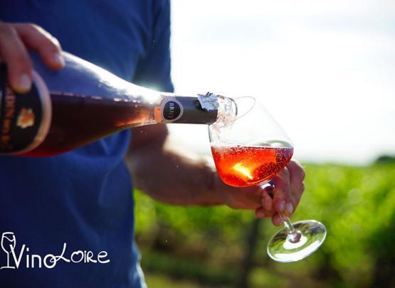 Vinoloire---Credits-Vincent-Delaby--15--3