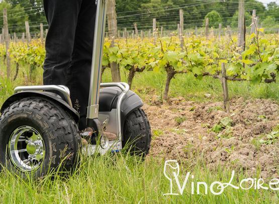 Vinoloire---Credits-Vincent-Delaby--7--3