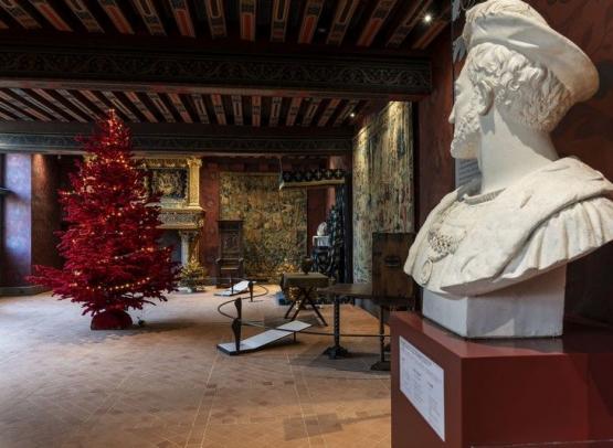 Noel-chateau-royal-de-blois-4-N. Wietrich