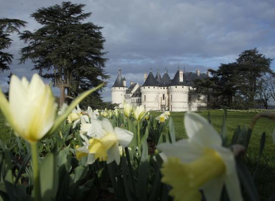 (239)chateau-chaumont-sur-loire©eric-sander
