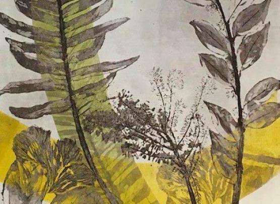 EXPOSITION DE GRAVURE AU MUSEE JOACHIM DU BELLAY