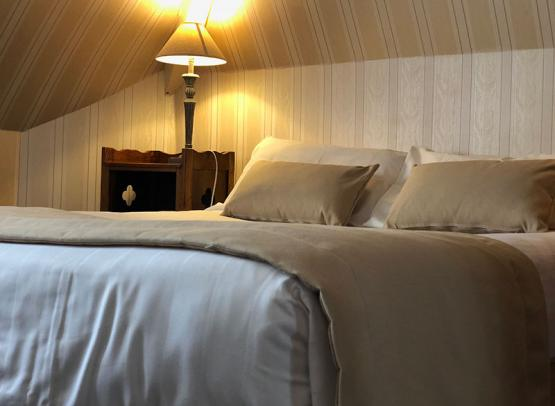 hôtel-Rabelais-Tours-chambre-standard
