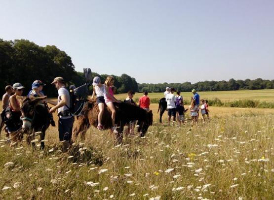 Vacances calme et familial en loir et cher Centre Val de Loire Camping nature ferme pédagogique de Prunay