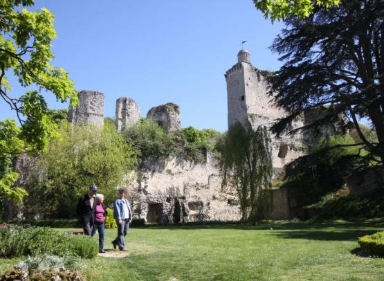 Vues du château 05 2016 059