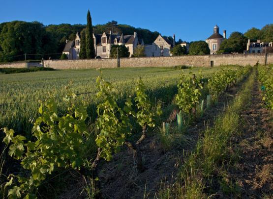 chateau-la_vauguyon02