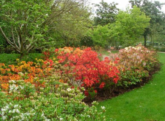 Jardin-Botanique05