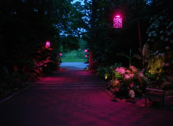Descente de Sologne Parc Floral de la Source,Orléans-Loiret©Lucas Goy