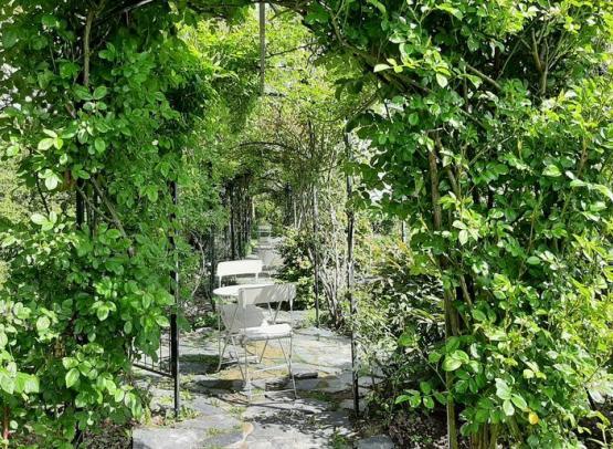 Jardin Morailles C.Cardon 800x600