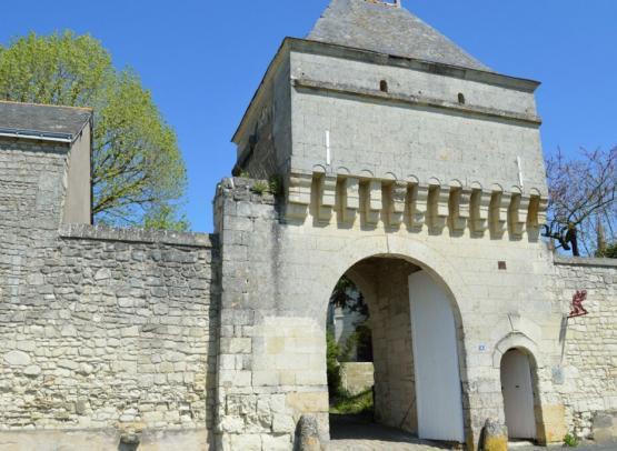 Anciens_remparts_du_Puy-Notre-Dame-Karine_LE_MEITOUR___SPL_SVLT-14676-1200px