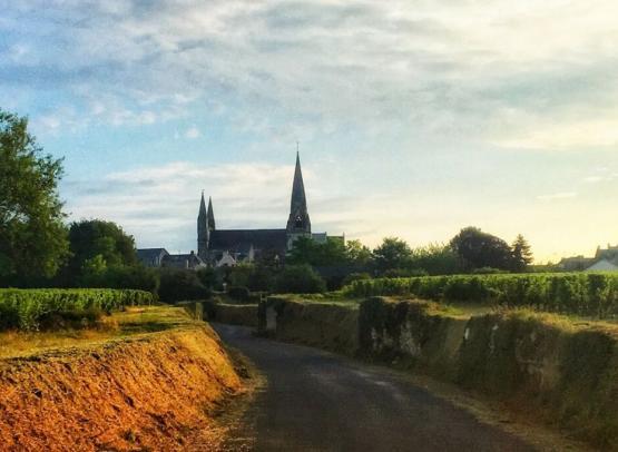 Le_Puy-Notre-Dame-Aude_Genevaise_SPL_SVLT