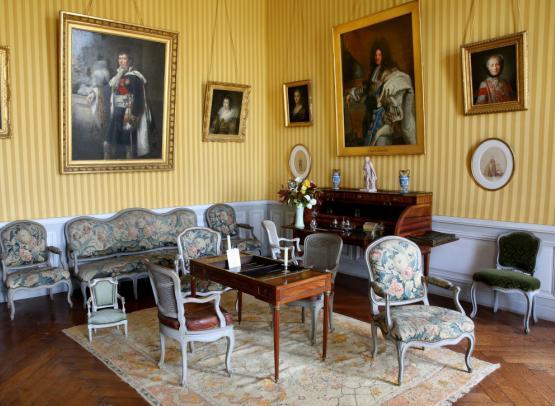 Chateau de Montgeoffroy - salon bouton d'or