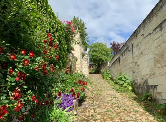 Ruelle fleurie de Montsoreau ©Aude Genevaise-SPL SVLT