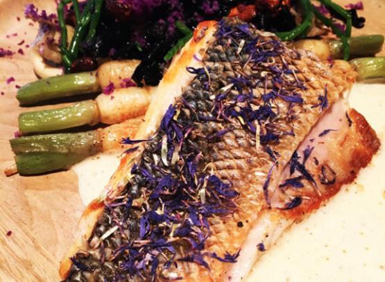 atelier_gourmand-restaurant-photo_plats-10