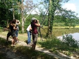 sologne-nature-environnement-balade-accompagnee-observation-oiseau-faune-flore