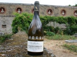 2014-chateaudeloiseliniere-gorges-44-DEG-16570