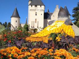 Fete-Fleurs-Automne-au-Rivau
