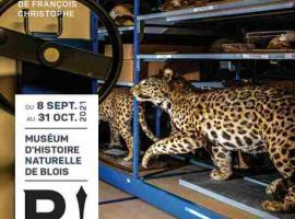 exposition-francois-christophe-museum-blois