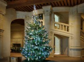 Noël-2015---Chambord-©-Léonard-de-Serres-(3)