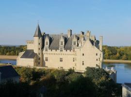 chateau_de_montsoreau_-_marie-caroline_chaudruc.jpg
