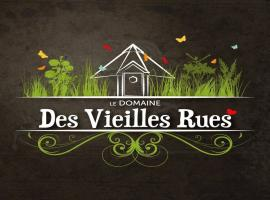 Logo_Domaine des Vieilles Rues modif