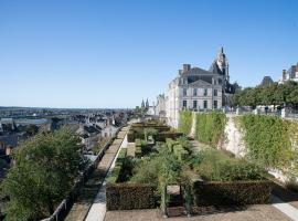 Ville-de-Blois©Mir-ADT41-(27)