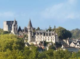 Cite_royale_Loches_SFremont